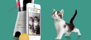 Jouer avec son chat à distance avec Kittyo