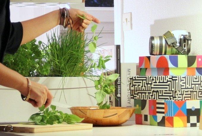 Fresh Square: Un jardin dans votre salon