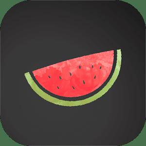 Vpn Melon